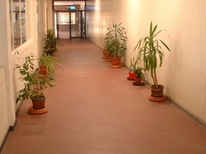 Coated floors for offices