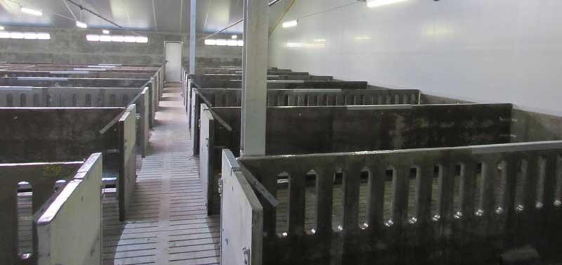 coatings voor de varkenshouderij